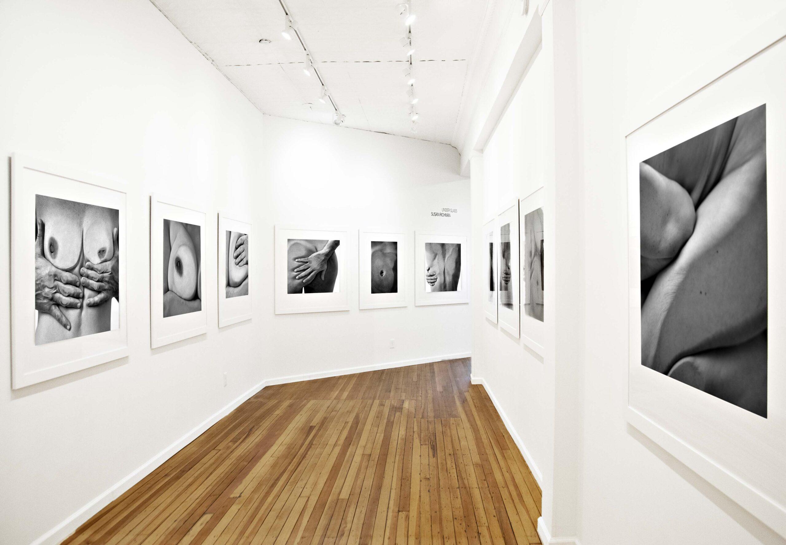 Under Glass, Upstream Gallery Exhibition- View 2